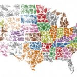 zipscribble-map-usa-fractal