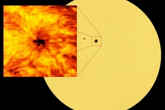 ALMA Starts Observing the Sun