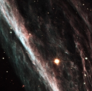 Supernova Shock Wave Paints Cosmic Portrait