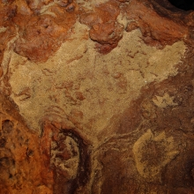 Cretaceous Footprints Found on Goddard Site