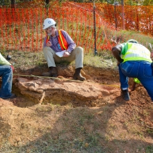 Cretaceous Footprints Found on NASA Goddard Campus