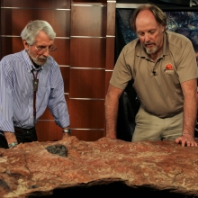 Cretaceous Footprints Discovered at Goddard Campus